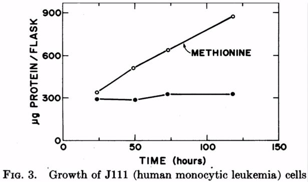 Groei van menselijke monocytische leukemiecellen
