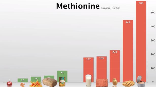 methioninegehalte in voeding